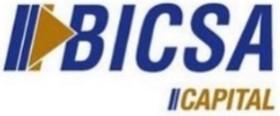 Bicsa capital