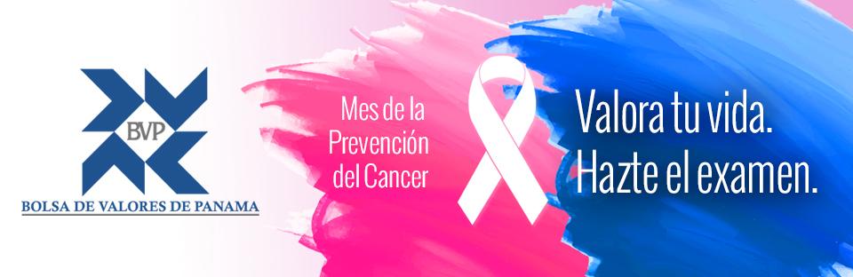 bolsa cancer